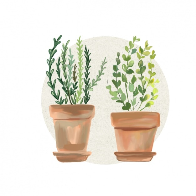 Watercolor Flowers Pots Design Vector Free Download