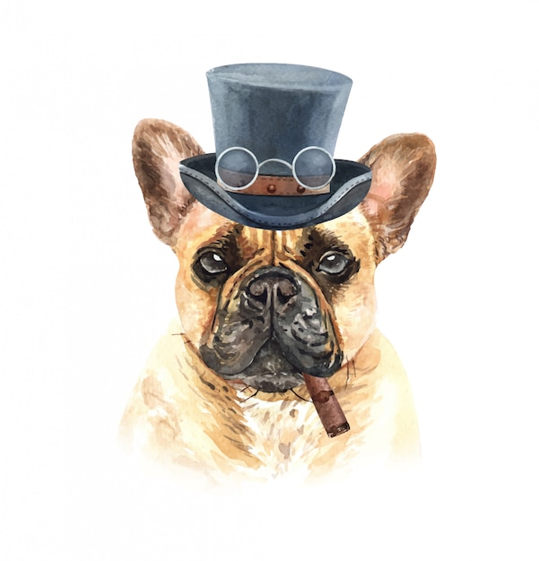 Watercolor french bulldog with glasses cigar and top hat. Premium Vector