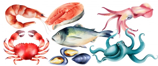 Watercolor fresh fish and mollusc from the sea Free Vector