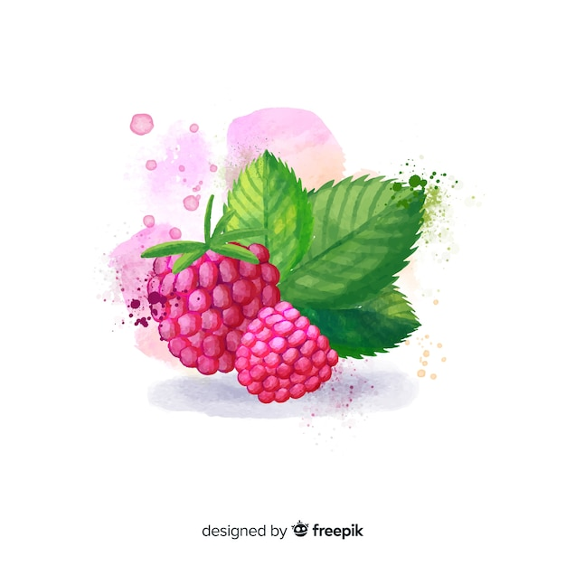 Watercolor fruit background with raspberries Free Vector