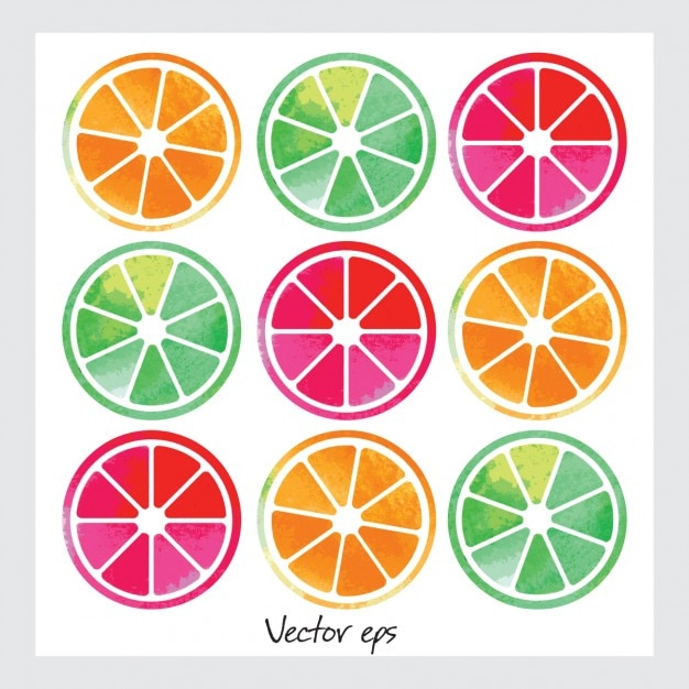 Watercolor fruit slices Free Vector
