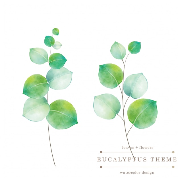 Watercolor green floral card Premium Vector