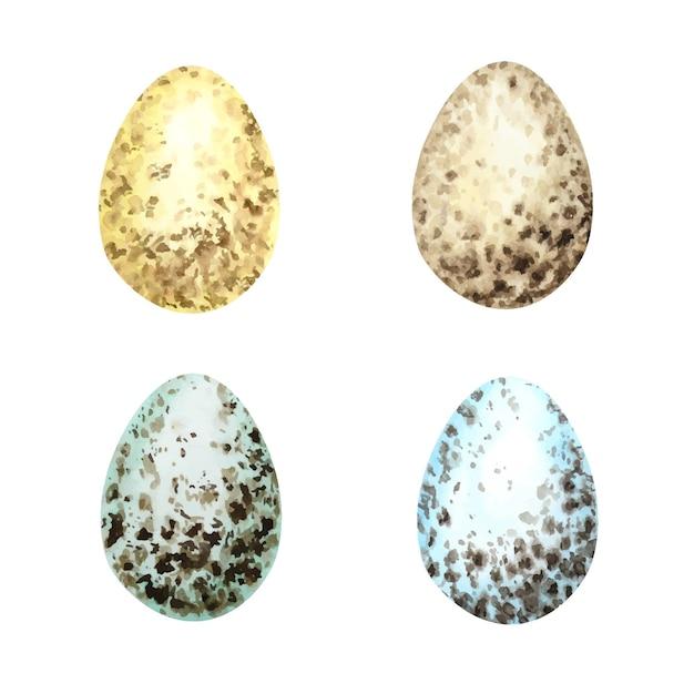 水彩手描きイースターエッグセット。白い背景で隔離のさまざまな野鳥の卵のカラフルなコレクション。 Premiumベクター