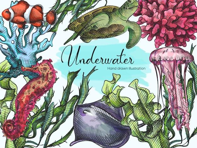 白地に青のペンで描かれた水中の生き物の水彩手描きスケッチセット。海洋生物。水族館の植物や動物。サンゴ、カメ、クラゲ、海草、ナマズ Premiumベクター