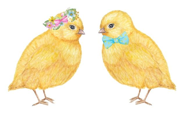 水彩手描き黄色ちけんカップル。 Premiumベクター