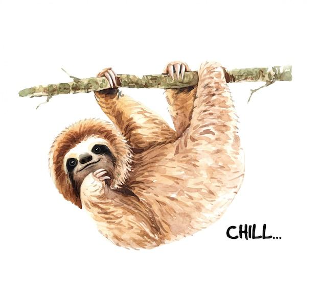 Watercolor hand painted cute sloth. Premium Vector