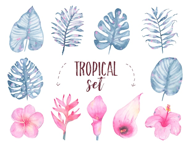 Watercolor hand painted tropical indigo leaf flower frangipani hibiscus calla lily set isolated on white Free Vector