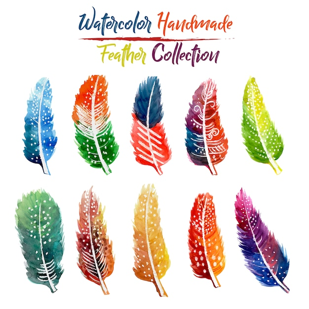 Watercolor Handmade Feather Collection