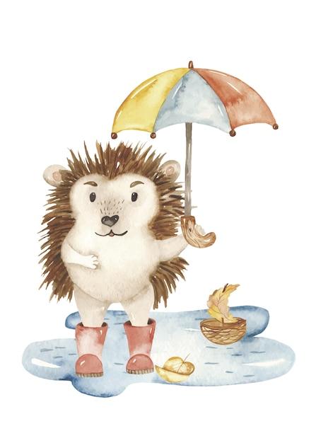 Watercolor hedgehog with umbrella in puddle Premium Vector