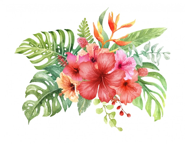 Watercolor Hibiscus Flower In Tropical Bouquet Vector Premium Download