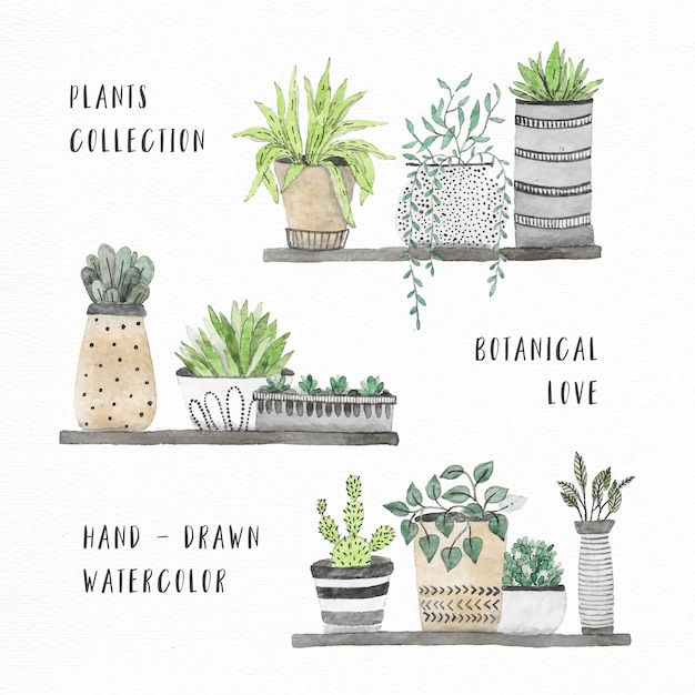 Watercolor house plants collection Free Vector