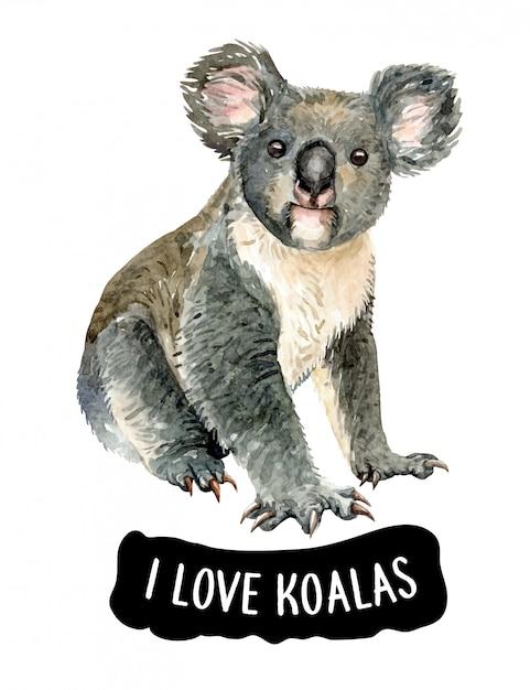 Watercolor i love koala Premium Vector