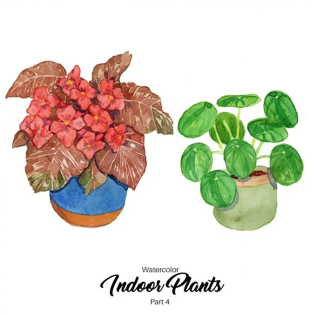 Watercolor indoor plants illustration Premium Vector