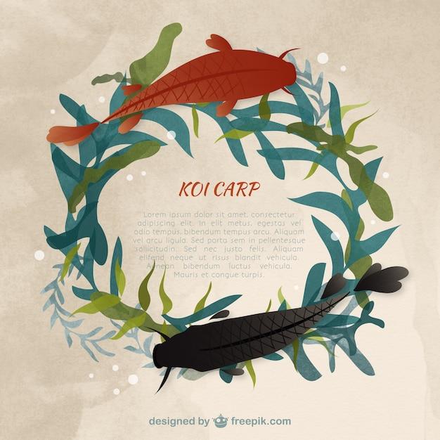 Watercolor koi carp template Vector | Free Download