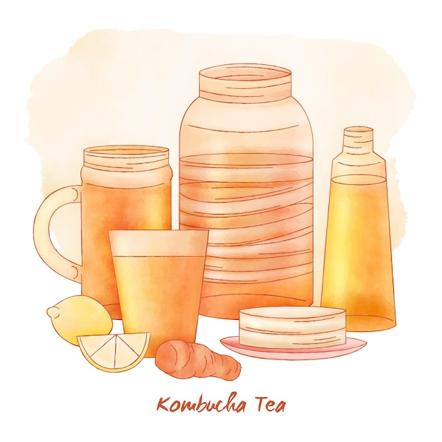 Concetto di tè kombucha dell'acquerello Vettore gratuito