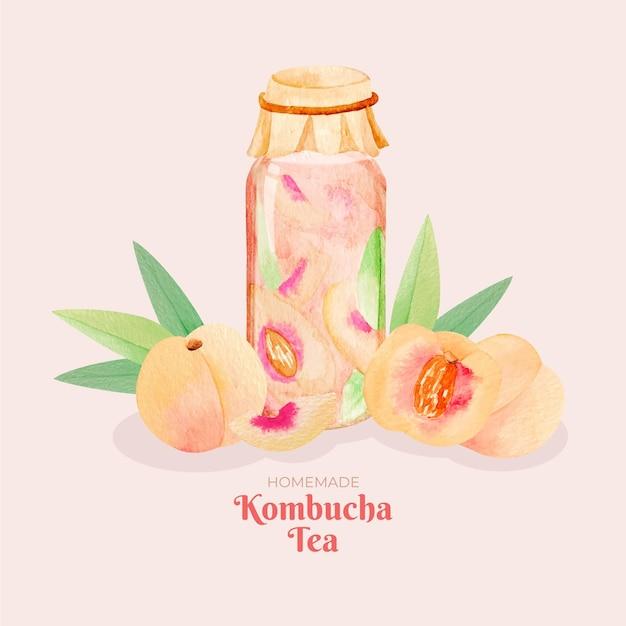 Illustrazione dell'acquerello del tè kombucha Vettore gratuito