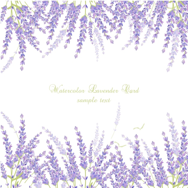 Watercolor lavender card Free Vector