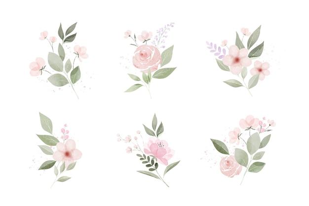 수채화 잎과 꽃 팩 무료 벡터