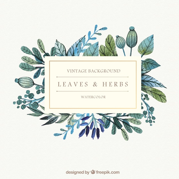 Watercolor leaves and herbs background Free Vector