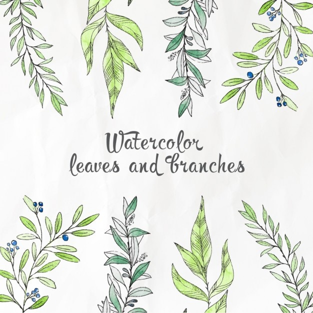 Watercolor leaves and branches Free Vector