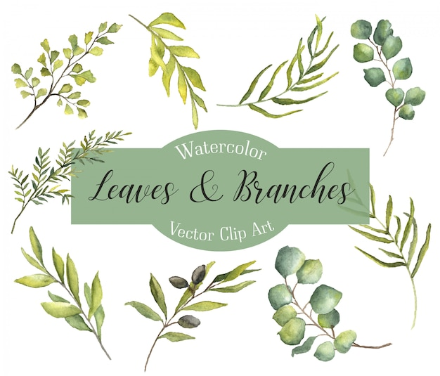 Watercolor leaves & branches Premium Vector