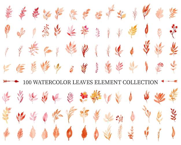 Watercolor leaves element collection Premium Vector