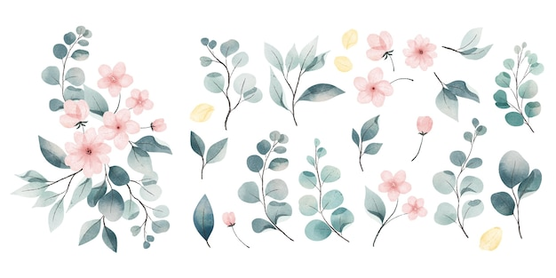 Collezione di foglie e fiori dell'acquerello Vettore gratuito