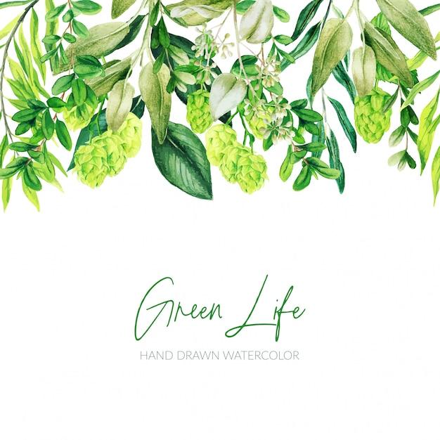 수채화 잎, 녹지 헤더, 원활한 테두리, 손으로 그린 프리미엄 벡터