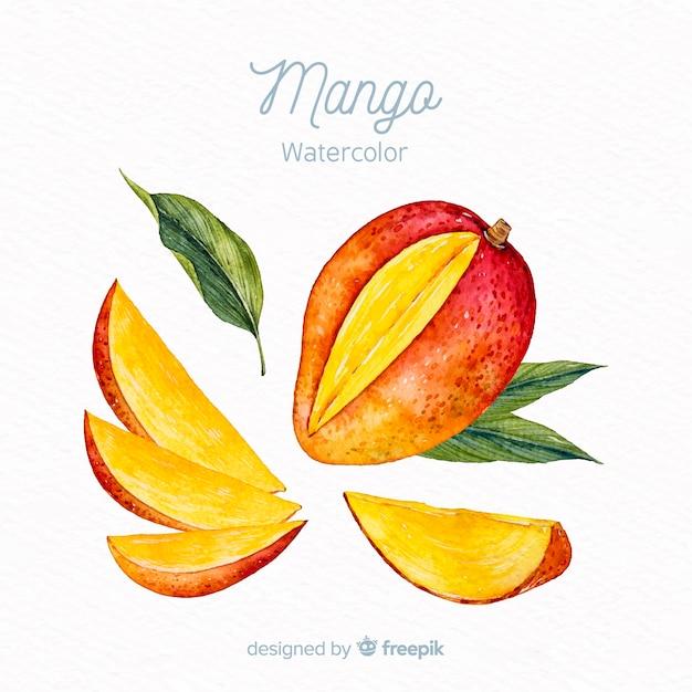 Watercolor mango background Free Vector