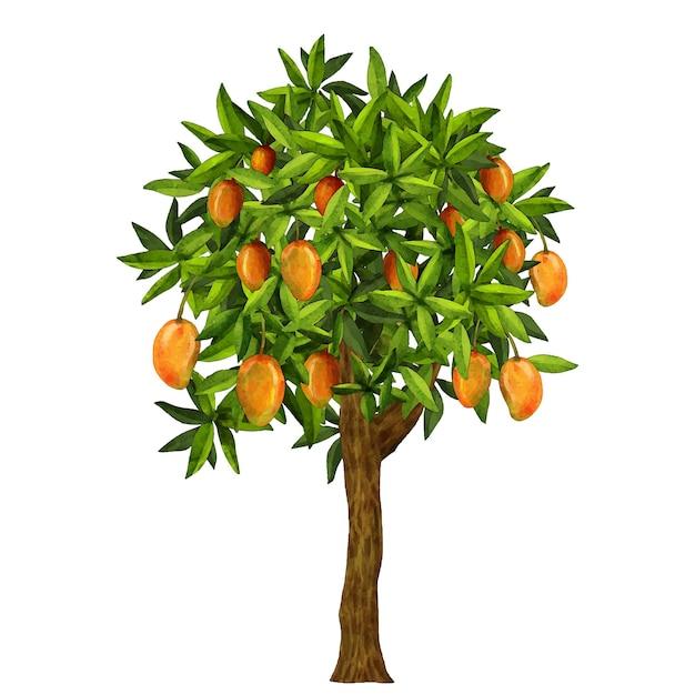 Watercolor mango tree illustration Free Vector