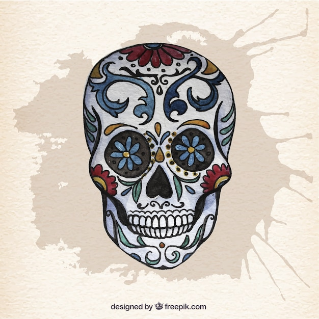 Watercolor Mexican Skull Vector Free Download