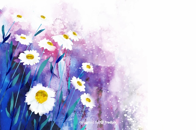 Watercolor natural background with daisies Premium Vector