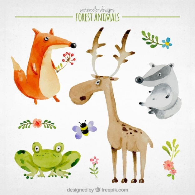 Watercolor nice forest animals Free Vector