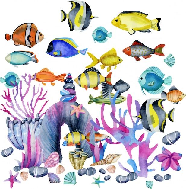 Watercolor oceanic tropical exotic fishes illustration Premium Vector