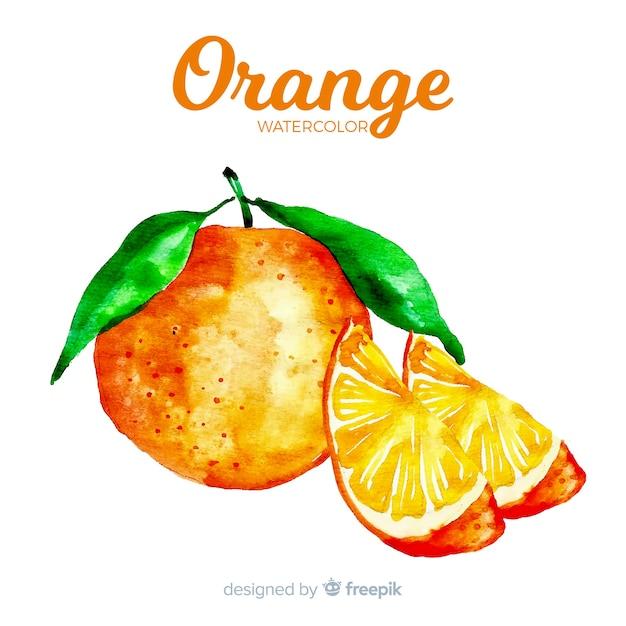 Watercolor orange Free Vector