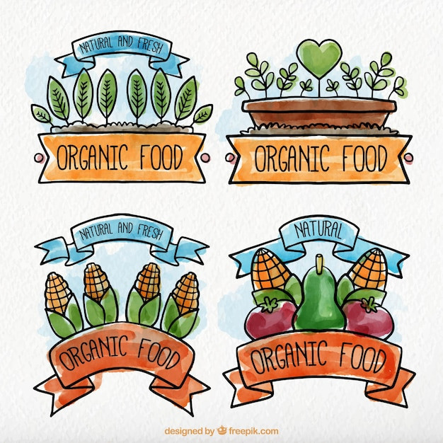 Watercolor organic food label collection
