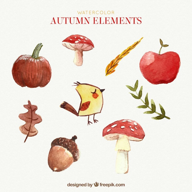 Watercolor pack of autumn elem Free Vector