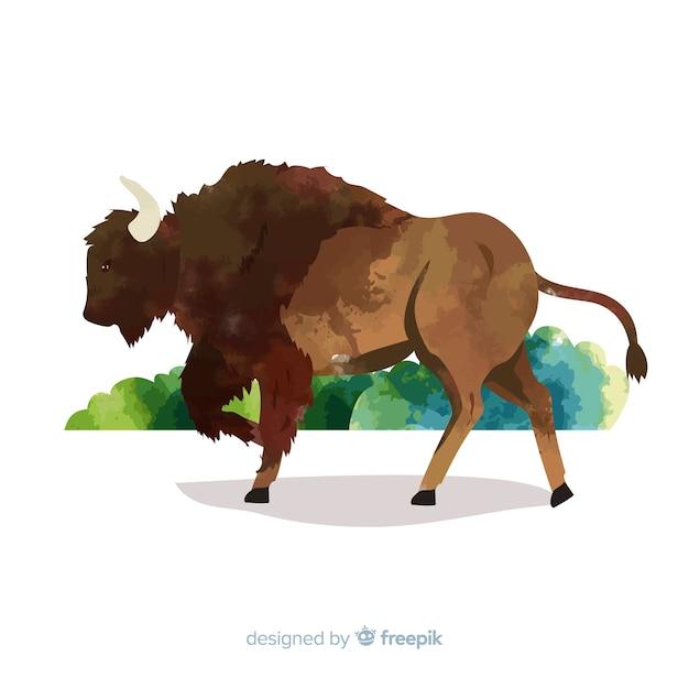 Pittura ad acquerello con bufalo della fauna selvatica Vettore gratuito