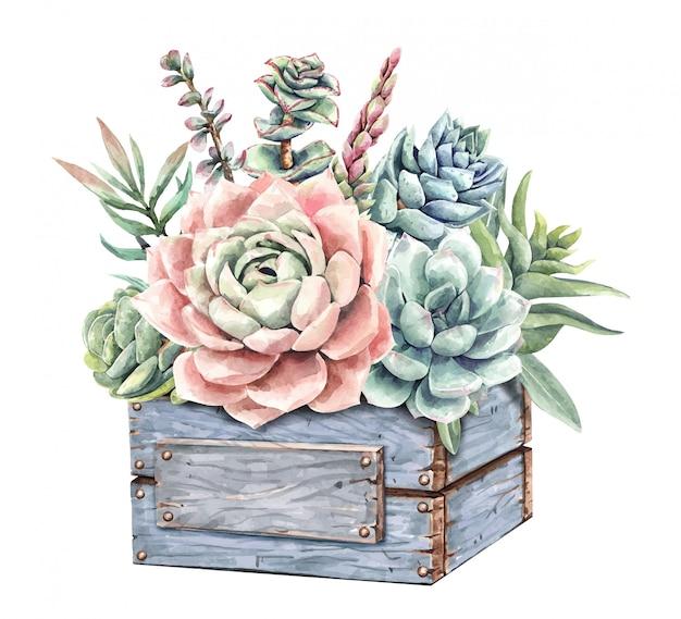 水彩画のジューシーなサボテンとウッドプランターツリーボックスとサボテンの花束。 Premiumベクター