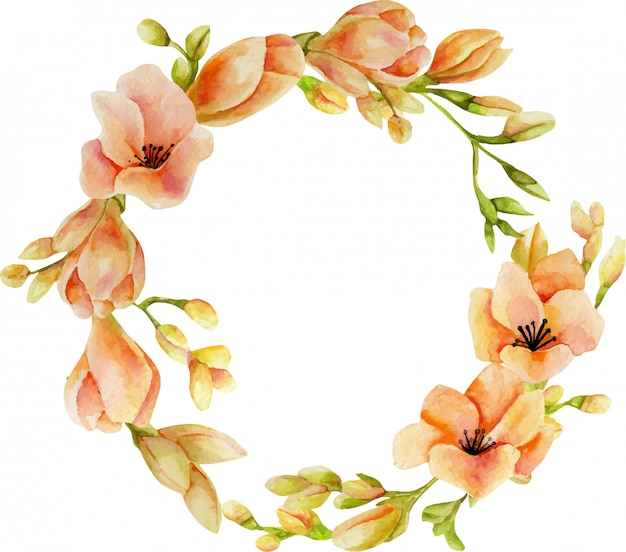 Watercolor pink freesia flowers wreath Premium Vector