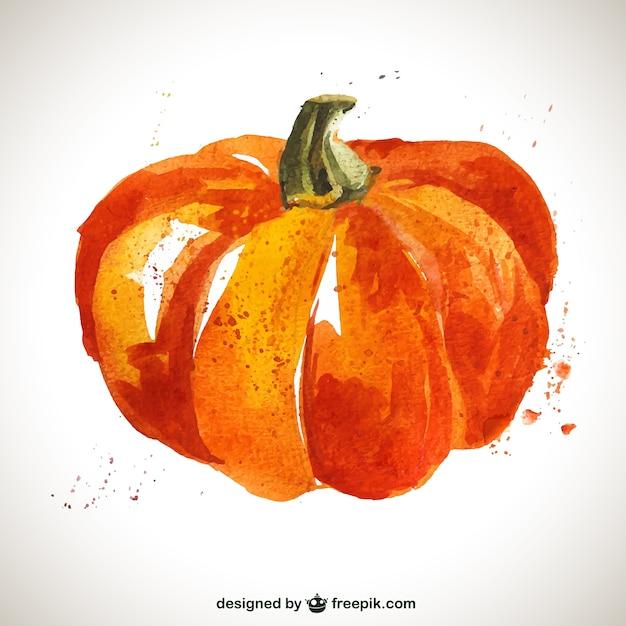 Watercolor pumpkin Free Vector