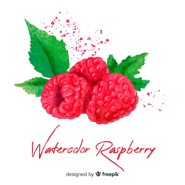 Watercolor raspberry background Free Vector