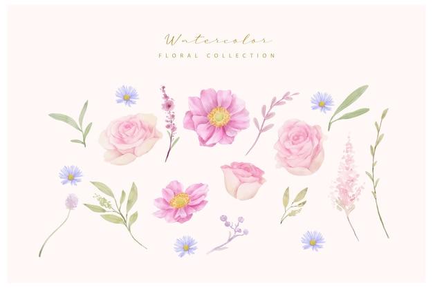 Collezione di rose dell'acquerello e fiori di anemone Vettore gratuito