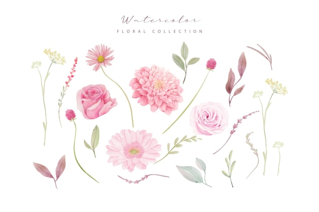 Watercolor roses, dahlia and gerbera flowers collection Free Vector
