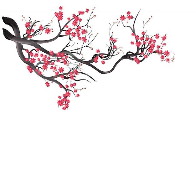 Watercolor sakura frame Premium Vector