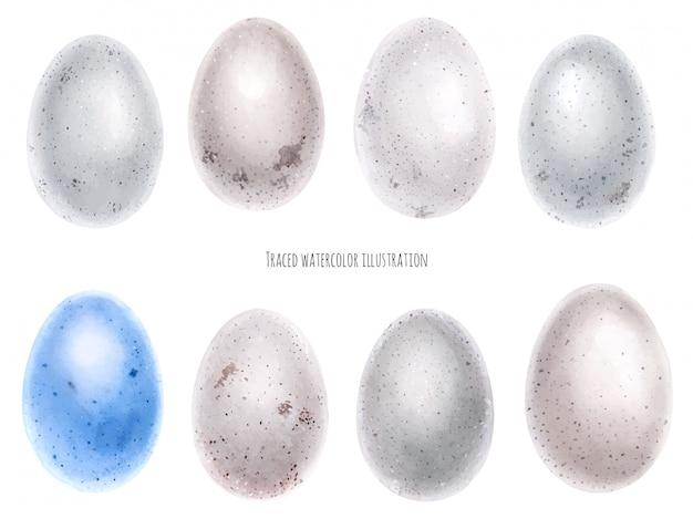 Watercolor set of bird eggs Premium Vector