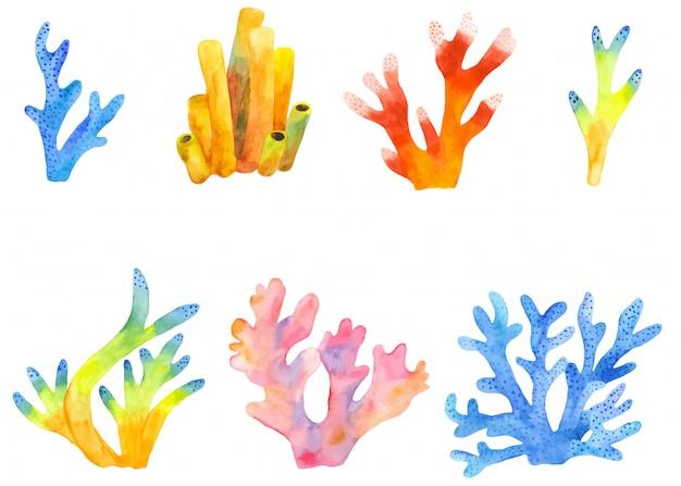 Watercolor set of coral reefs clipart   Premium Vector