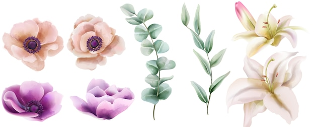 Watercolor set of hibiscus and peony flowers with green leaves Free Vector