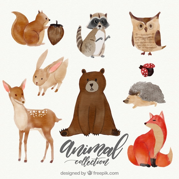 Watercolor set of lovely animals Free Vector