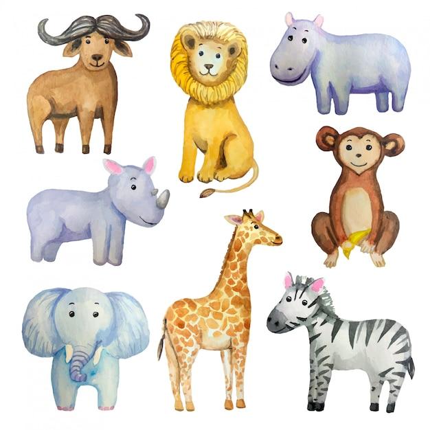 Акварельный набор тропических экзотических животных: слон, жираф, лев, обезьяна, зебра, бегемот, носорог, буйвол. Premium векторы